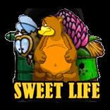 игровые автоматы игровые автоматы Sweet Life