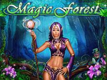Игровой аппарат онлайн Magic Forest – способы игры в эмулятор